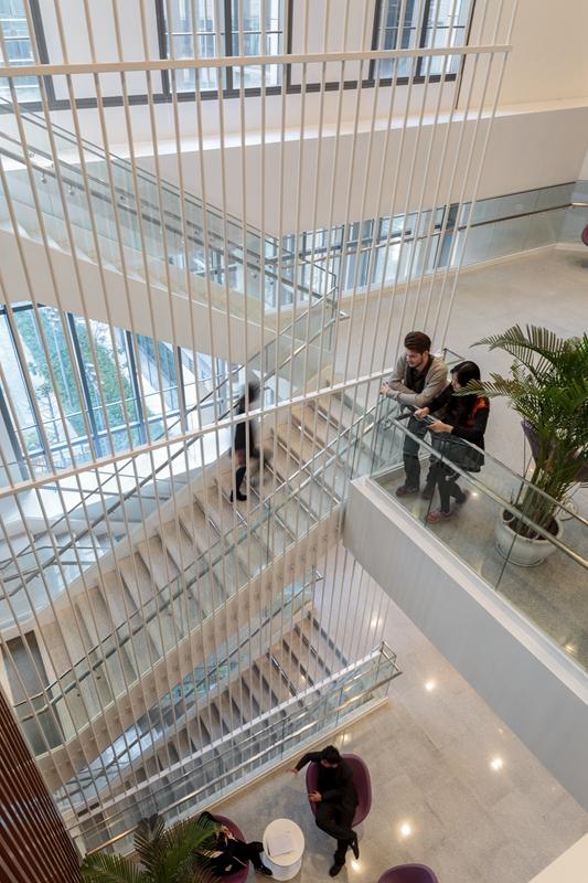 NYU Shanghai (3)