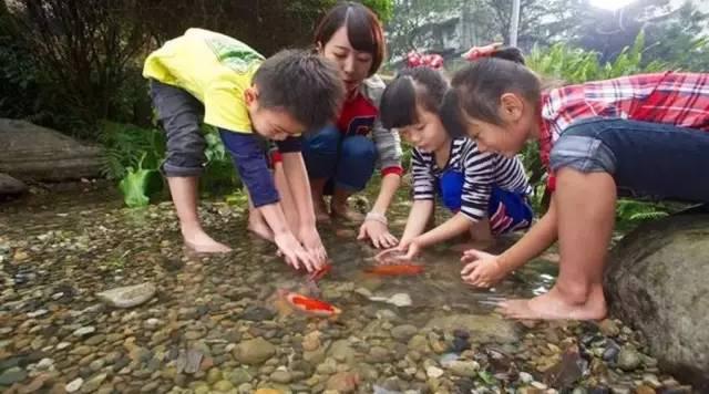 自然教育,森林教育,全球视角
